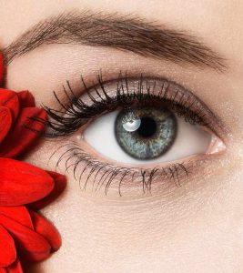 Ophthalmology/Eye Surgery